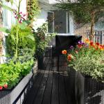 aménager un jardin sur un balcon